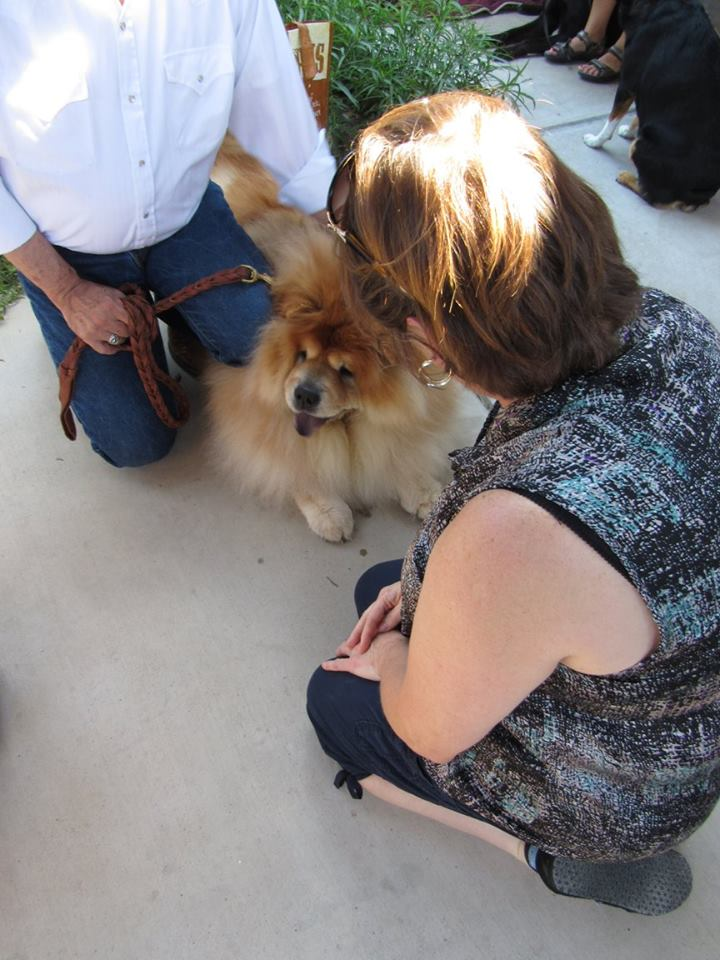 Blessing of the Animals 11