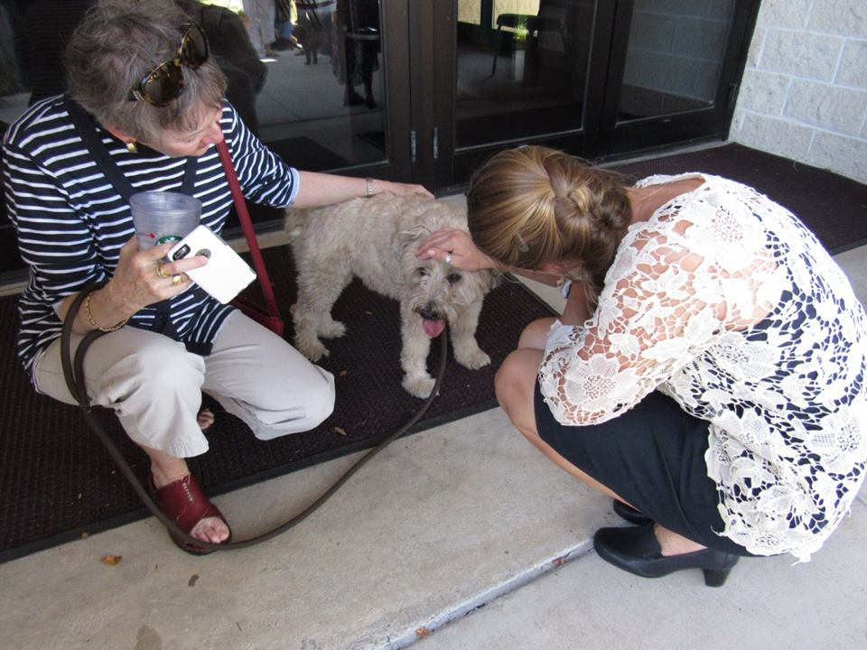 Blessing of the Animals 9